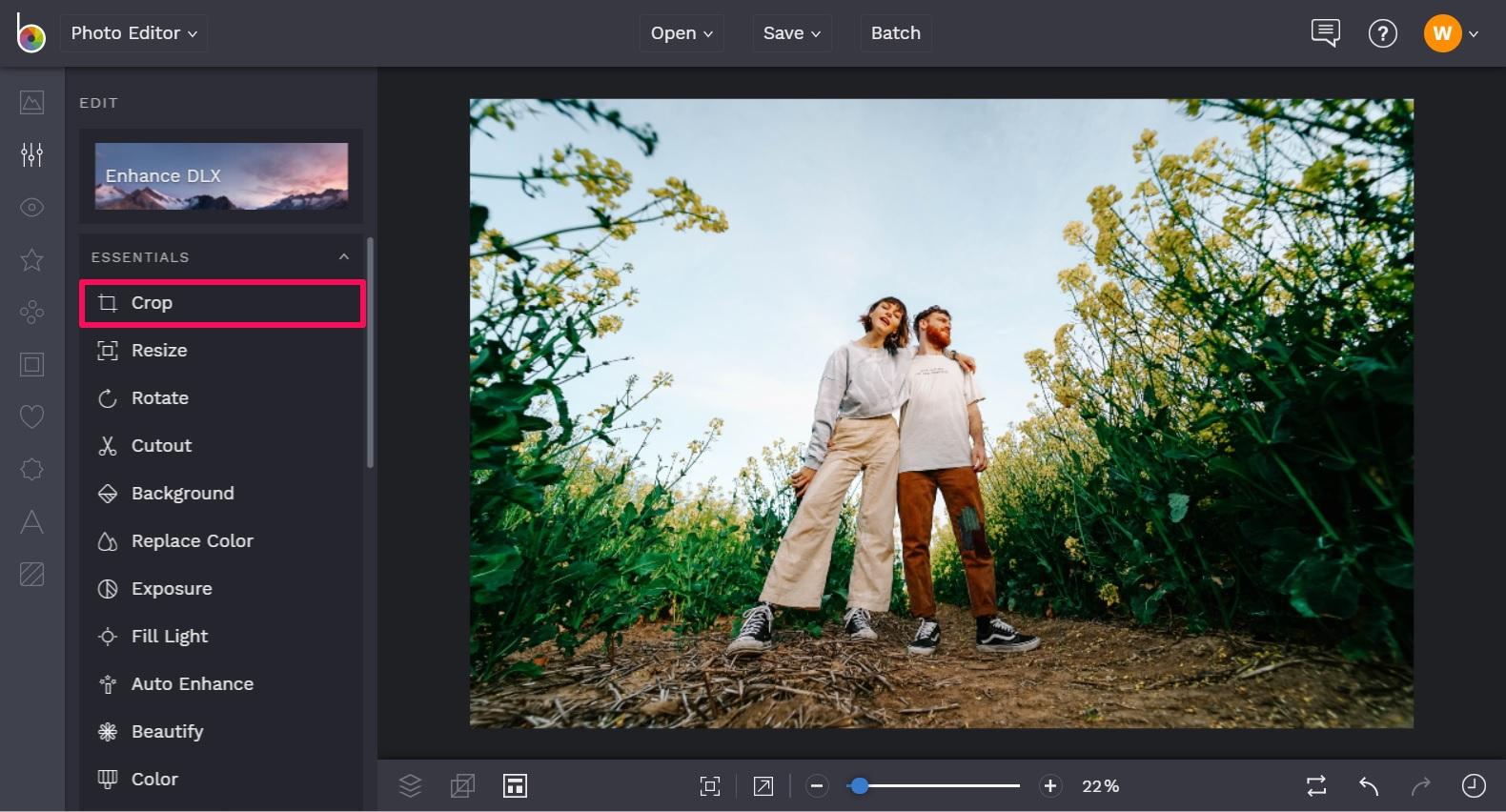Crop your photos in BeFunky